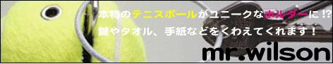 テニスボールフック